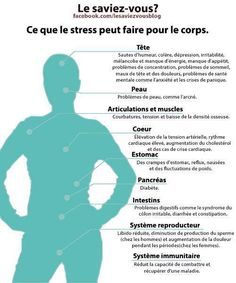 Stress on one's body - important to keep in mind during the school year!