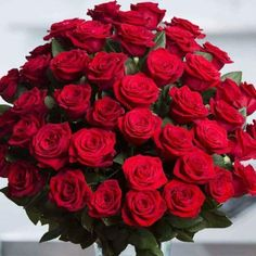 Have red roses delivered from Spring in the Air for Christmas, Valentine's Day, or any romantic occasion. Our luxury red roses are sure to please! Red Rose Bouquet, Flower Food, Cut Flowers, Rose Wallpaper, Red Roses, Floral Arrangements, Beautiful Flowers, Floral Design, Bloom