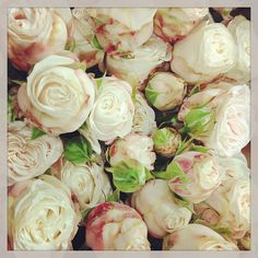 I've seen some other flowers (peonies, etc.) substituted with spray roses.. these are gorgeous!