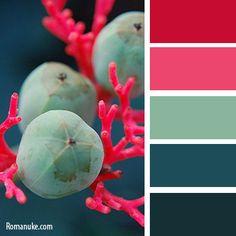 in color balance 548 Red Color Schemes, Blue Colour Palette, Color Palate, Color Combos, Pink Color, Bright Colors, Design Seeds, Pantone, World Of Color
