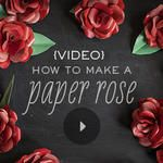 VIDEO: How to Make a Paper Rose