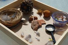 nature table - Google-Suche