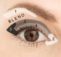 Where to apply eye shadow for a basic look. Use neutral colors for daytime and add darker color for  and  plus a dark liner above the upper lash line for evening. ♥ #EyeMakeupGlitter Eyeshadow Guide, Blending Eyeshadow, How To Apply Eyeshadow, How To Apply Makeup, Eyeshadow Steps, Applying Eyeshadow, Eyeshadow Techniques, Eyeshadow Palette, Eye Shadow Blending