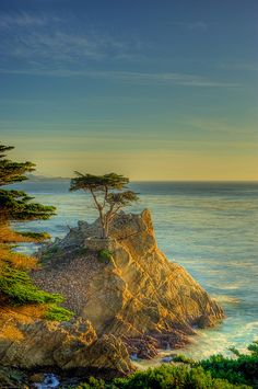 """Lived in Carmel.Lone Cypress, Monterey Peninsula, California: """"Butterfly Town USA"""" Places to See Before You Die/ A Traveler's Life List"""" by Patricia Schultz) Great Places, Places To See, Beautiful Places, Amazing Places, Scenic Photography, Nature Photography, Places Around The World, Around The Worlds, Spiritual Paintings"""