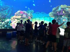 Best Kids Indoor Activities In Brisbane   Must do Brisbane