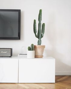 Entertainment area look ikea cactus, cactus decor, tv unit decor, tv de Home Living Room, Interior Design Living Room, Living Room Decor, Decoration Inspiration, Interior Inspiration, Tv Unit Decor, Casa Clean, Living Room Inspiration, My New Room