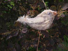 Ptáček z magické zahrady