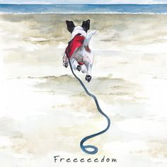 Wire Hair Jack Russell Art Print - Freedom - The Little Dog Laughed Chien Jack Russel, Jack Russell Dogs, Jack Russell Terrier, Toy Fox Terriers, Terrier Dogs, Round Robin, Freedom Art, Dog Paintings, Crazy Dog