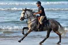 Carreras de caballos en San Lúcar
