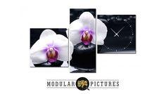 Такими нежными картинами с орхидеями, Вы украсите не одну комнату, зал или заведение. Эти цветы очень богаты своей красотой и разнообразием. На заметку, орхидеи – символ совершенства. А что-то для своего совершенства, Вы можете найти у нас на сайте modular-pictures.ru или просто позвонить по телефону +7 (499) 686-10-12. Приятных Вам заказов