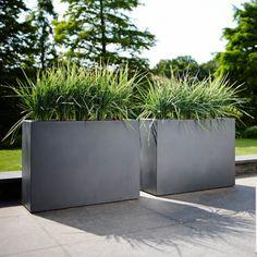 Jardinière rectangle brise vue hauteur 59cm en polyéthylène 80x30cm Pure