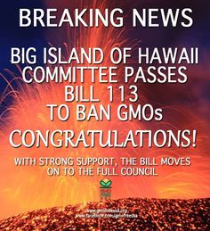 BREAKING NEWS: Big Island of Hawaii County Council Committee passed a GMO prohibition Bill by vote of 6-2. Bill 133 moves forward to the full Council later this month. Bill will ban open air cultivation of GMOs, with exception of the GM Papaya already being grown on island. Hawaii island is last w/o GMO experimentation & least contaminated island in state of Hawaii. While on island GMO papayas were cut down during night. Click for Maui Info.