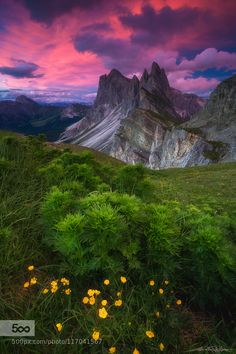 Layers by Martin Pfister #Mountains #Flowers