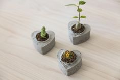 Mini cement heart planter DIY | Lovilee Blog