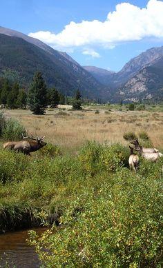 Rocky Mountain National Park, Colorado | Rocky Mountains | Explore Colorado
