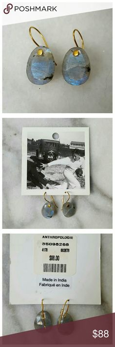 "Anthropologie Confection Drops Faceted labradorite stones on gold-plated brass wires. Labradorite reflects blue when it catches the light. 1"" long, stone .75"". New in package. Anthropologie Jewelry Earrings"