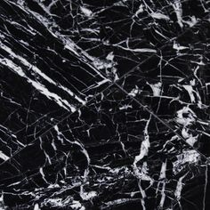 "12"" x 12"" Marble Field Tile in Black"