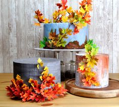 Cakes range from classical tiered wedding cakes to sculpted cakes. Birdcage Wedding Cake, Wedding Cakes, Cakes By Melissa, Sculpted Cakes, Bird Cage, Custom Cakes, Autumn Leaves, Sculpting, Planter Pots