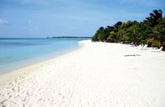 Summer Island Village-Maldives. We loved every minute of this holiday and met one of our closest friends here!