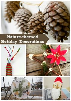20+ holiday decorations using things from nature