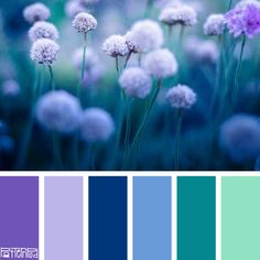 Color Palettes Blue Colour Palette Azul Purple Schemes