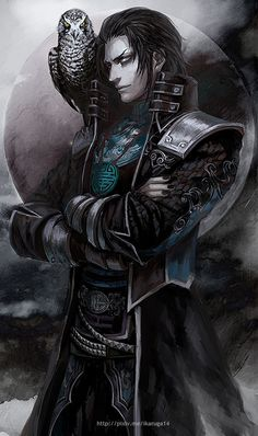 Jia Chong (Dynasty Warriors)