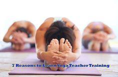 7 Reasons to Learn Yoga Teacher Training