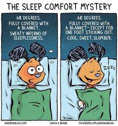 The Sleep Comfort Mystery