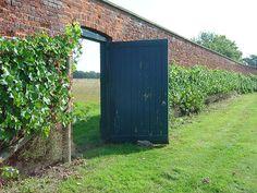 Vineyard Door