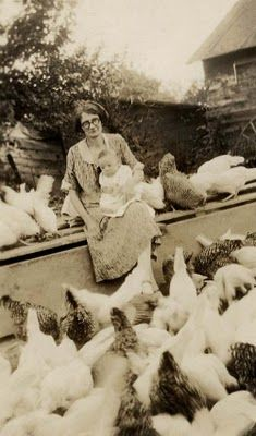 lots of chickens.she is a chicken lady Chickens And Roosters, Pet Chickens, Raising Chickens, Chickens Backyard, Vintage Pictures, Old Pictures, Old Photos, Time Pictures, Gallus Gallus Domesticus