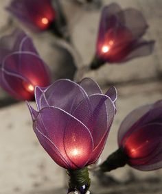 Purple Tulip String Lights