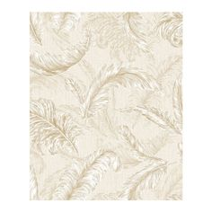 Gilded Feather Cream and Gold Wallpaper   Graham & Brown ($68) ❤ liked on Polyvore featuring home, home decor, wallpaper, cream wallpaper, feather wallpaper, gold wallpaper, gold home accessories and beige wallpaper