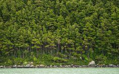 A Trip to Patagonia - The Atlantic