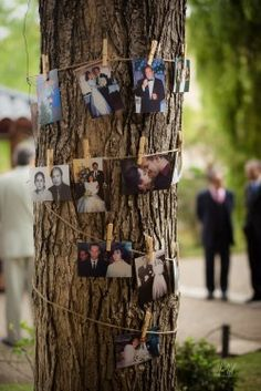 Bird Feeders, Garden Wedding, Ladder Decor, Rustic Wedding, Wedding Decorations, Weddings, Outdoor Decor, Ideas, Party