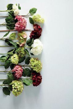 41 Trendy Ideas for wedding flowers peonies hydrangea green My Flower, Fresh Flowers, Beautiful Flowers, Spring Flowers, Happy Flowers, Faux Flowers, Colorful Flowers, Silk Flowers, Deco Floral