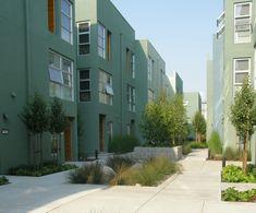 SuDS basins/raingardens in tight urban residential setting.  emeryville glas haus
