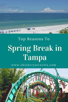 Learn why Tampa, Florida is the top Spring Break destination! From white sand beaches to amusement parks and major league baseball spring training, there is something for everyone in the family. Tampa truly is the best location for your Spring Break vacation!