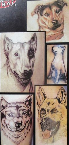 tattoo Tattoo Drawings, Tattoos, Old Magazines, Portrait, Animals, Tatuajes, Animaux, Tattoo, Men Portrait