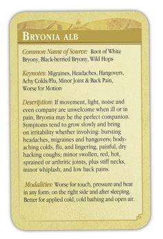 Bryonia Homeopathy