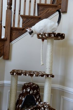This beautifully crafted elegant cat tree can be easily assembled . On Sale! Modern Cat Furniture, Pet Furniture, Cat Tree Designs, Cat Trees, Cat Condo, Scratching Post, Condos, Animal Design, Posts