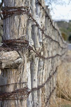 Log and Barbed wire... I would love to meet the man that built this...