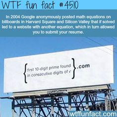 How google finds the smartest people to hire -   WTF fun facts