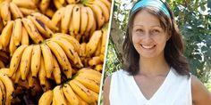Banana é uma fruta extremamente saudável que proporciona inúmeros benefícios para a nossa sa...
