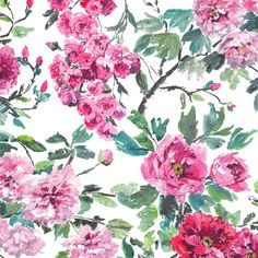 shanghai garden - peony fabric | Designers Guild