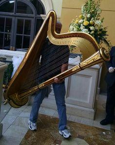 My Trusty Harp-Hauler/Husband attends to my Harp everywhere we go. Harp, Lake Tahoe, Utah, Las Vegas, Husband, Touch, Weddings, Outdoor Decor, Last Vegas