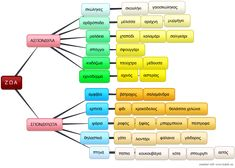 Φ.Ε.1: Ζώα ασπόνδυλα και σπονδυλωτά - Digital Zoot Education, Create, Onderwijs, Learning