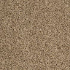 """Carpeting in the Caress Collection in style """"Angora III"""" color Cornwall"""