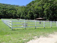 Gado, Nick Bateman, Heartland, Horses, Flowers, Stock Fencing, Farm Fencing, Farmhouse Plans, Backyard Fences