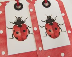 Set of 4 ladybird gift tags British Wildlife, Wildlife Art, Insect Art, Watercolor Design, Wooden Hearts, Birthday Greeting Cards, Botanical Prints, Biodegradable Products, Gift Tags