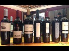 Vinos Grandes Pagos de España: su origen contado por Carlos Falcó